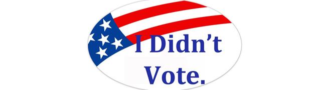 I_didnt_vote