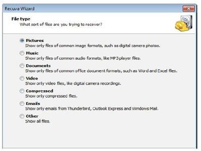Wizard File Types.jpg