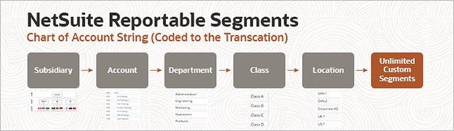 NetSuite_Feature-2_Picture-4_Segments-COAbased