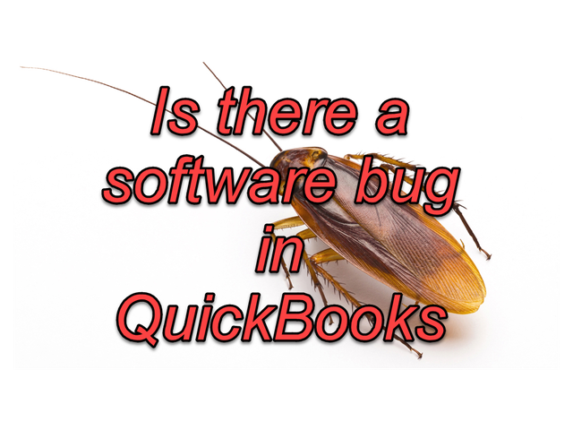 Software-bug in QB-2019.png