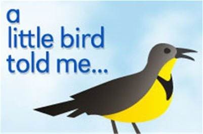 A little bird told me.jpg