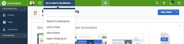 Accountant Toolbar 2
