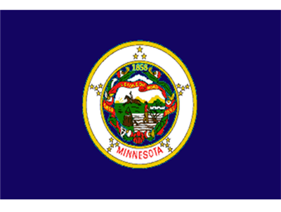 Minnesota Flag.png
