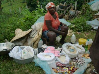 SALT Loan Client - Haiti