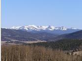 NM Mounts.png