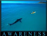 awareness.png