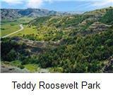 Teddy Park.jpg