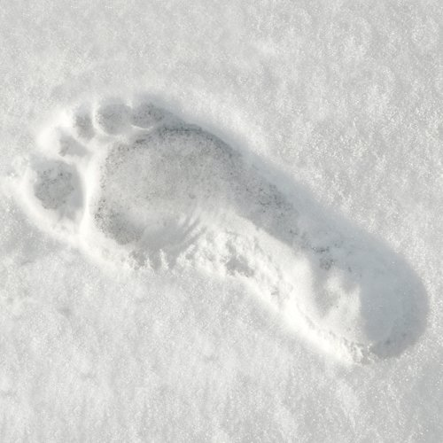 face the yeti footprint