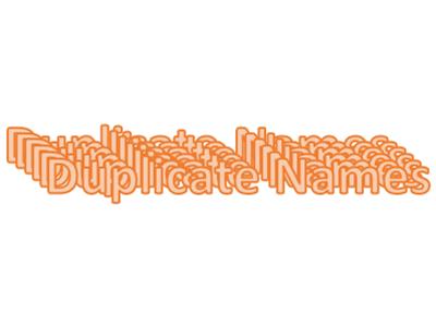 Duplicate Names