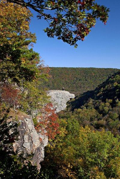 Arkansas Whitake Point