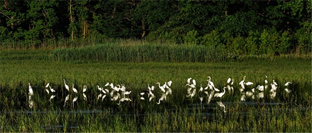 Bombay National Wildlife Refuge