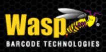 WaspTech